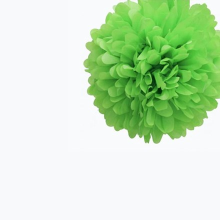Green Tissue Pom Pom - Small Green-Tissue-Pom-Pom---Small