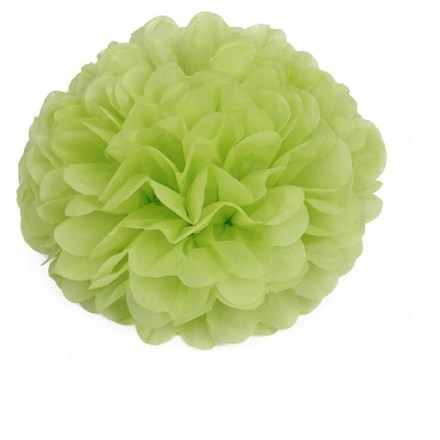 Light Green Tissue Pom Pom - Large Light-Green-Tissue-Pom-Pom---Large