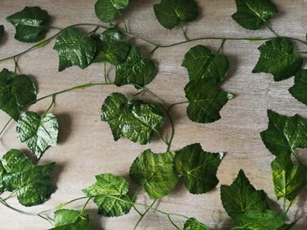 Large Leaf Ivy Garland Large-leaf-garland