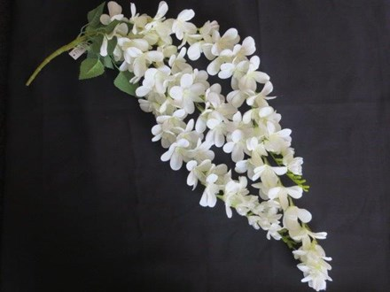 3 Strand Thai Orchid 3-Strand-Thai-Orchid