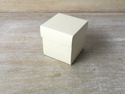 Ivory Favour Boxes 10pcs KA102