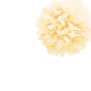 Ivory Tissue Pom Pom - Small Ivory-Tissue-Pom-Pom---Small
