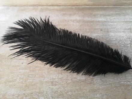 Ostrich Feathers Black 40-45cm Ostrich-Feathers-Black-40-45cm
