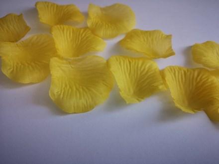 Yellow Scatter Petals Yellow-Scatter-Petals