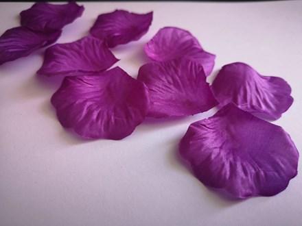 Violet Scatter Petals Violet-Scatter-Petals
