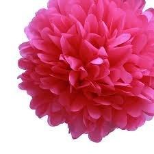 Fuchsia Tissue Pom Pom - Large Fuchsia-Tissue-Pom-Pom---Large